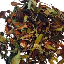 Thyolo Peony White Tea from Malawi
